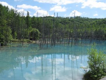 裏青い池.JPG