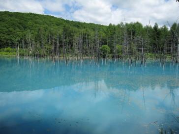 青い池.JPG